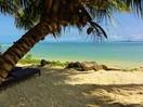 Palm Beach9